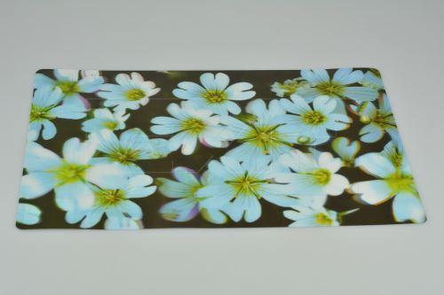 3D prostírání s měnícím se efektem (42x28cm)
