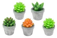 Svíčka kaktus v sádrovém květináčku (9cm) - Mix barev, 1ks - 8719987009259