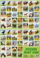 Pexeso Život koní (8588001170790)