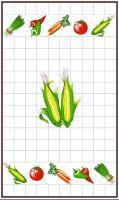 VERATEX Utěrka 40x70cm kukuřice 100% Bavlna (1ks)