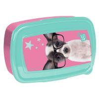 Svačinový box domácí čivava s brýlemi ptd-3022