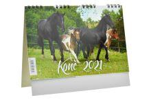 Kalendář 2021 (22x18cm) - Koně - 8594170074272