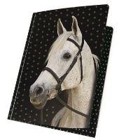 Deska s elastickými pásy koní hvězda zlatá