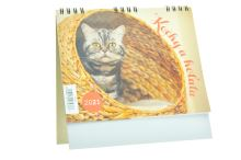 Kalendář 2021 (17x17.5cm) - Kočky a koťata - 8594170074333